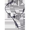 Motorola PMLN5102